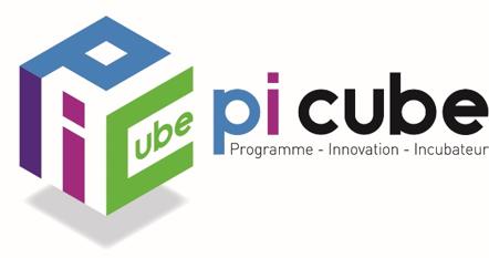 Témoignage Picube webinars crowdfunding